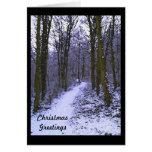 Maderas azules en nieve felicitaciones