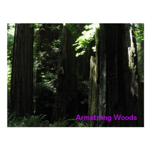 Maderas de Armstrong, CA Postales