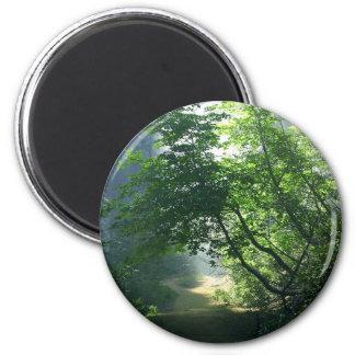 Maderas de los bosques de los rastros de las traye imán redondo 5 cm