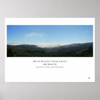 """Maderas de Muir desde arriba de "" Poster"