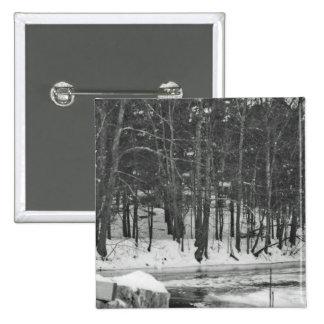 Maderas de New Hampshire Pin