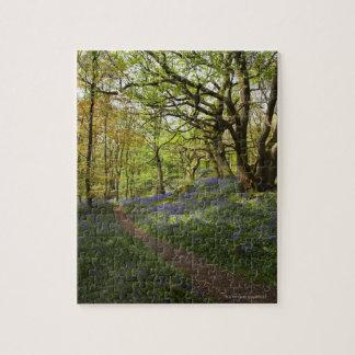 Maderas del bluebell de la primavera puzzles