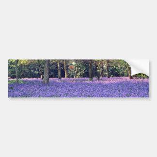 Maderas del Bluebell, flores de Inglaterra Pegatina De Parachoque