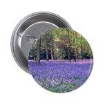 Maderas del Bluebell, flores de Inglaterra Pin Redondo 5 Cm