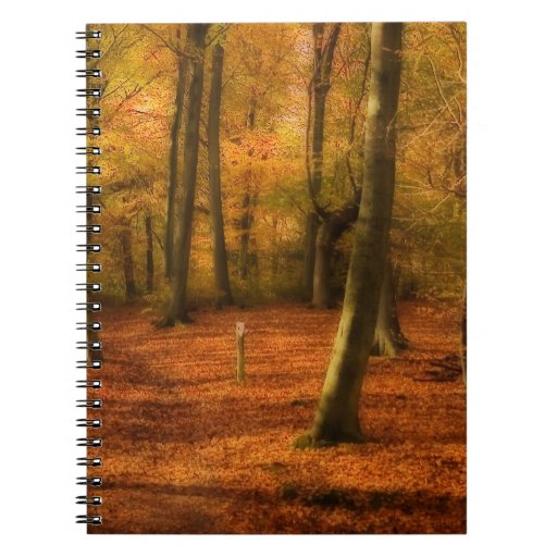 Maderas del otoño libros de apuntes