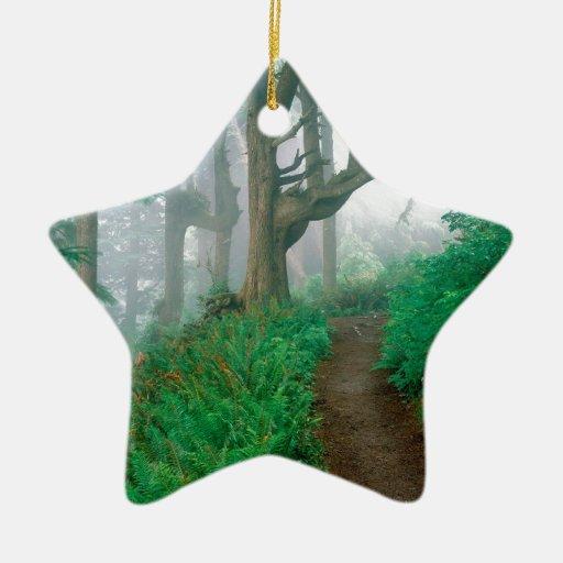 Maderas del puesto de observación del cabo del adorno de cerámica en forma de estrella