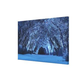 Maderas del sonámbulo (navidad) lienzo envuelto para galerias