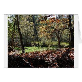 maderas en otoño tarjeta de felicitación
