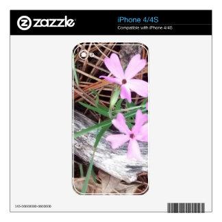 maderas en rosa calcomanía para iPhone 4