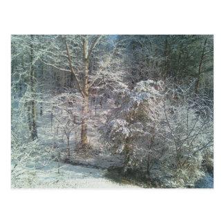 Maderas hivernales postal