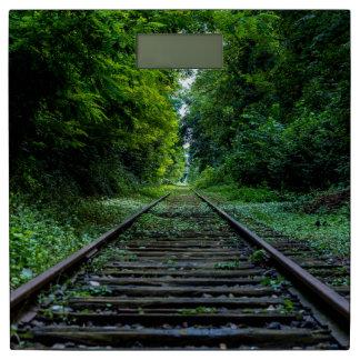 Maderas verdes de las pistas de ferrocarril del báscula