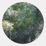 Maderas verdes más oscuras con el centro de la pegatina redonda