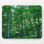 maderas verdes tapete de ratones
