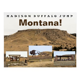 Madison Buffalo Jump Postcard