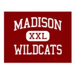 Madison - gatos monteses - centro - Madison la Flo Postal