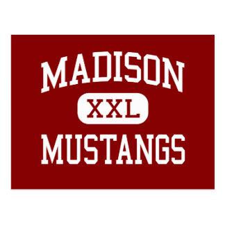 Madison - mustangos - escuela secundaria - Tampa l Tarjetas Postales