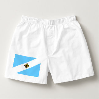 Madison, Wisconsin Flag Boxers