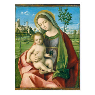 Madonna and Child by Giovanni Bellini Postcard