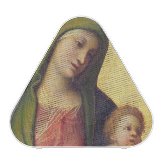 Madonna and Child with Angels c.1510-15 (oil on pa Speaker