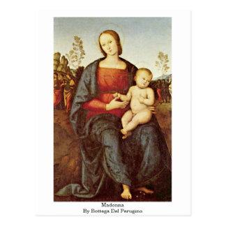 Madonna By Bottega Del Perugino Postcard