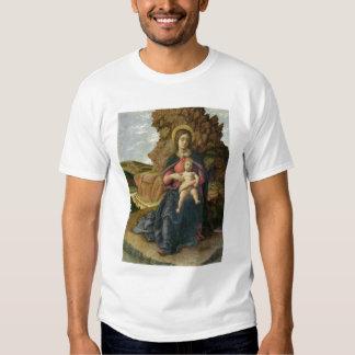 Madonna de la cueva, 1488-90 (tempera en el panel) camisas