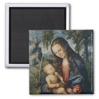 Madonna debajo del árbol de abeto, c.1510 imán cuadrado