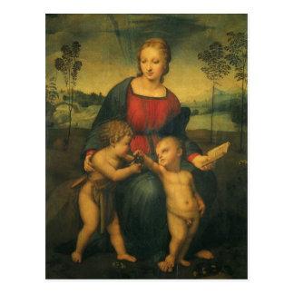Madonna del Goldfinch arte renacentista de Raphae Tarjeta Postal