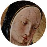 Madonna del ornamento del navidad de las sombras esculturas fotograficas