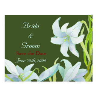 Madonna Lilies: Wedding Save the Date Postcards