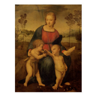 Madonna of the Goldfinch, c.1506 Postcard