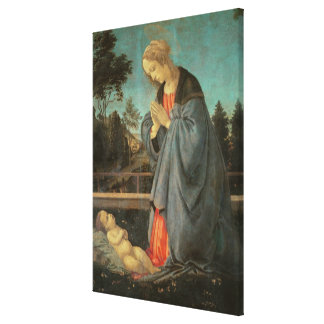 Madonna que adora al niño, c.1477-80 (aceite en p impresiones en lienzo estiradas