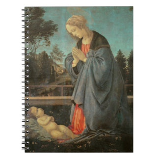 Madonna que adora al niño, c.1477-80 (aceite en p notebook