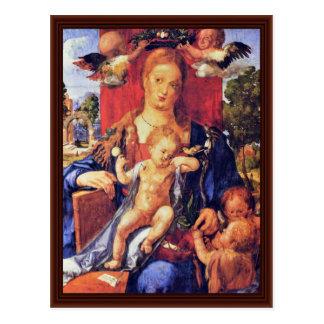 Madonna With The Siskin By Albrecht Dürer Postcard