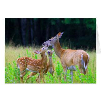 Madre atada blanco de los ciervos y cervatillos ge felicitación