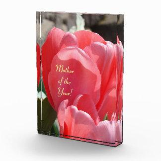¡Madre del año! tulipanes rosados de las placas de