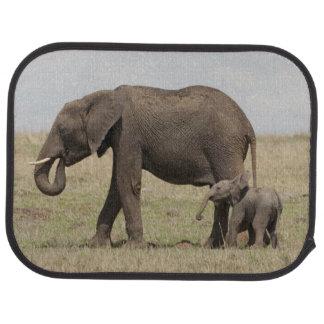 Madre del elefante africano con caminar del bebé alfombrilla de auto