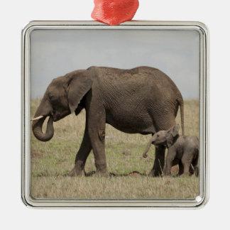 Madre del elefante africano con caminar del bebé adorno