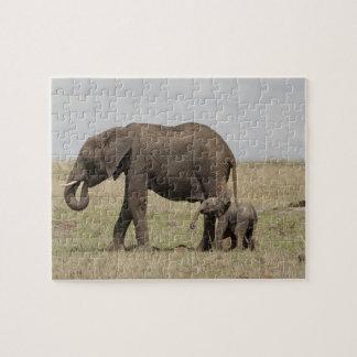 Madre del elefante africano con caminar del bebé rompecabezas con fotos