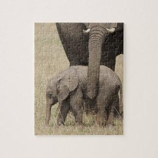 Madre del elefante africano con el bebé 2 que cami rompecabeza con fotos