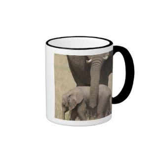 Madre del elefante africano con el bebé 2 que taza de dos colores