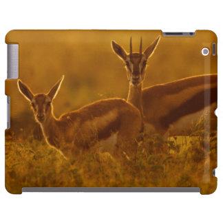Madre del Gazelle de Thompson (Gazella Thomsonii) Funda Para iPad