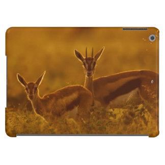 Madre del Gazelle de Thompson (Gazella Thomsonii) Funda Para iPad Air