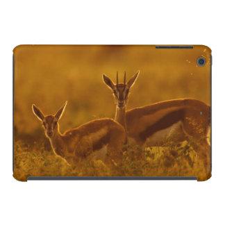 Madre del Gazelle de Thompson (Gazella Thomsonii) Fundas De iPad Mini Retina