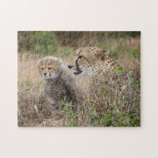Madre del guepardo y rompecabezas de Cub
