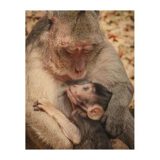 Madre del mono y mono del bebé cuadro de madera