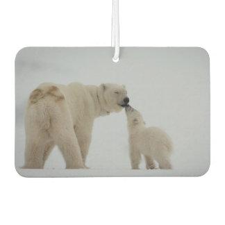 Madre del oso polar con el cachorro