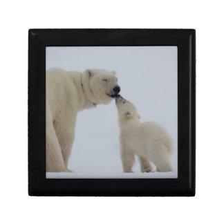 Madre del oso polar con el cachorro joyero cuadrado pequeño