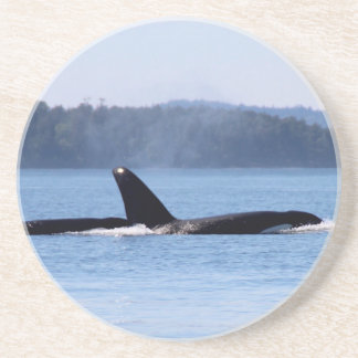 Madre e hijo de la orca posavasos manualidades