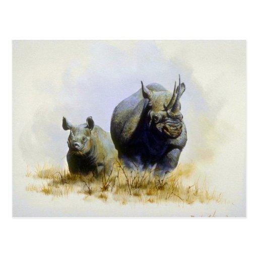 Madre e hijo, rinoceronte tarjetas postales