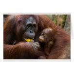 Madre e hijo tarjetas